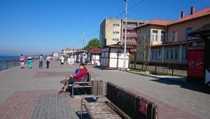 зеленоградск город1